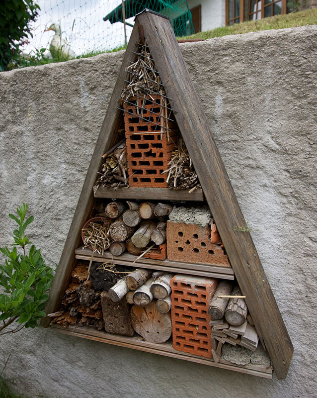 insect hotel variat