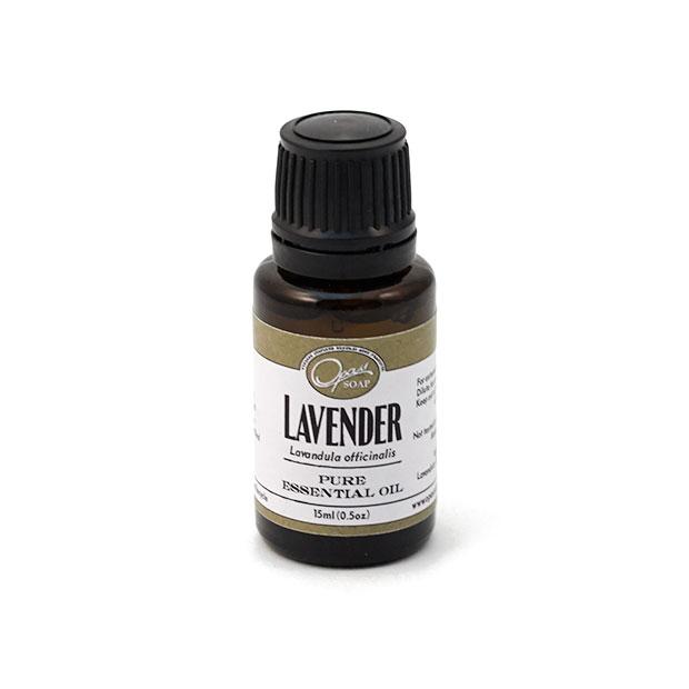 Lavender (Lavandula officinalis)