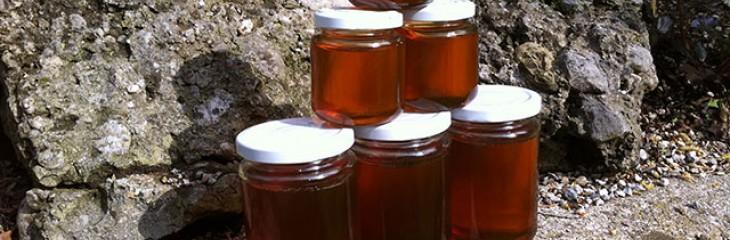 How to make Dandelion Honey