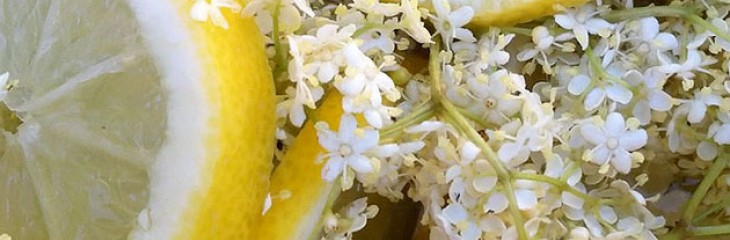 How to make your own Elderflower Syrup