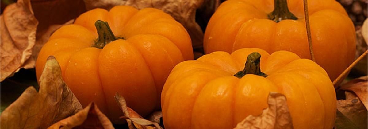 Handmade Pumpkin Soap